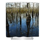 Reflections At Big Cypress Shower Curtain