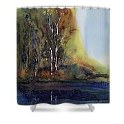 Reflections Shower Curtain by Carolyn Doe