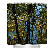 Reflections Fall Shower Curtain