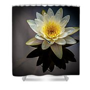 Reflections In A Pond Shower Curtain