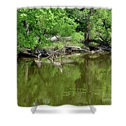 Reflections In Green Shower Curtain