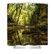 Reflections In Rio Pelago Shower Curtain