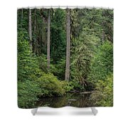 Reflections In Silver Falls State Park Shower Curtain