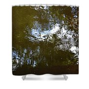 Reflections No2 Shower Curtain