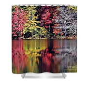 Reflections Of A Bare Grey Tree Shower Curtain
