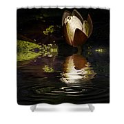 Reflections Of A Lily Shower Curtain