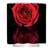 Reflections Of A Red Rose Shower Curtain