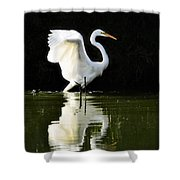 Reflections Of An Angel  Shower Curtain