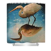 Reflections Of Creation Shower Curtain