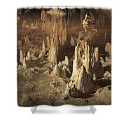 Reflections Of Reality Shower Curtain