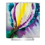 Reflections Of The Universe No. 2057 Shower Curtain