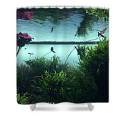 Reflections Of Waterlii Shower Curtain