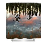 Reflections Off Pond In British Columbia Shower Curtain