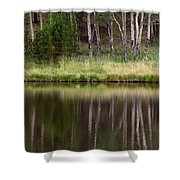 reflections RIV M 2 Shower Curtain