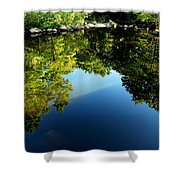 Reflections Trees Shower Curtain