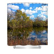 Reflective Cloudy Palatine, Il,  Library Pond Shower Curtain