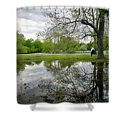 Reflective Field In Spring Shower Curtain