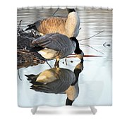 Reflective Geese Shower Curtain