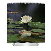 Reflective Lilly Shower Curtain