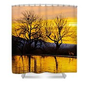 Reflective Pool At Eden Shower Curtain