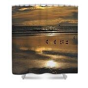 Reflective Sunset Shower Curtain
