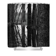 Reflective Tree Shower Curtain
