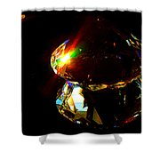 Refraction Reflection Shower Curtain