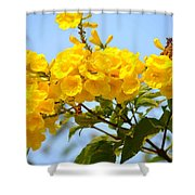 Refreshing Yellows Shower Curtain