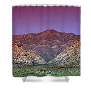 Regal Desert Shower Curtain