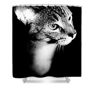 Regal Feline Shower Curtain