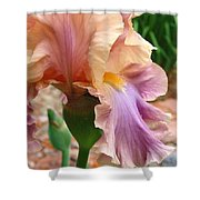 Regal Flower Shower Curtain