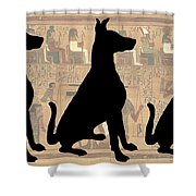 Regal Sit, Ancient Egyptian Background Shower Curtain