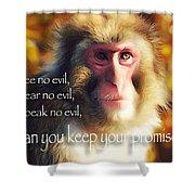 Regulation Of A Monkey Shower Curtain