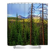 Reids Peak Shower Curtain
