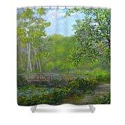 Reinsteinwoods Park Shower Curtain