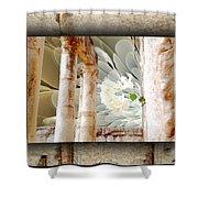 Rejuvenation Shower Curtain