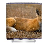 Relax 3 Shower Curtain