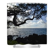 Relax - Recover Shower Curtain