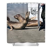 Releasing Elephant Seals Shower Curtain