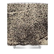 Remains 1 Shower Curtain