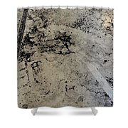 Remains 3 Shower Curtain