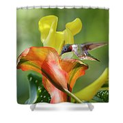 Remarkable Inspiration  Shower Curtain