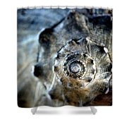 Remember The Sea With Me Shower Curtain