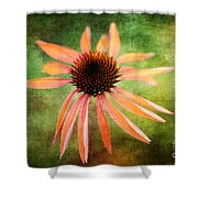 Remembering Summer Shower Curtain