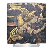 Ren Lady With Wings Shower Curtain