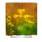 Renacemos Shower Curtain