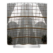 Rencen From Within Shower Curtain