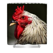 Renegade Rooster Shower Curtain
