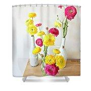 Renunculus Shower Curtain