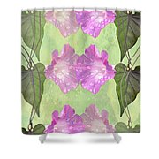 Repeated Morning Glories Shower Curtain